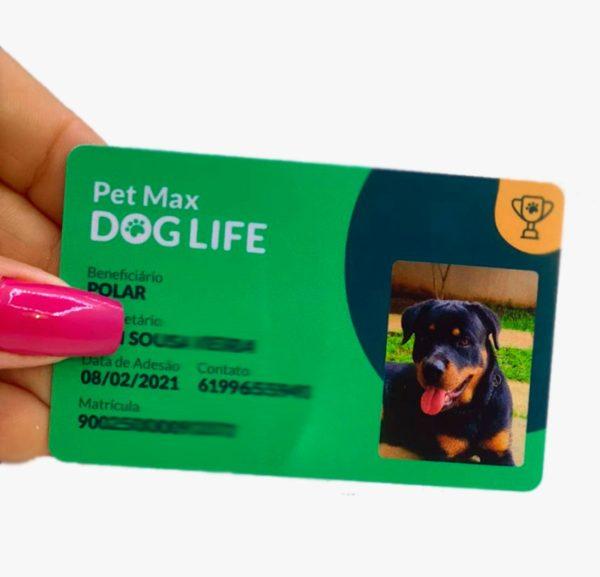 Crachá para plano de saúde Pets PVC preço em Belo Horizonte